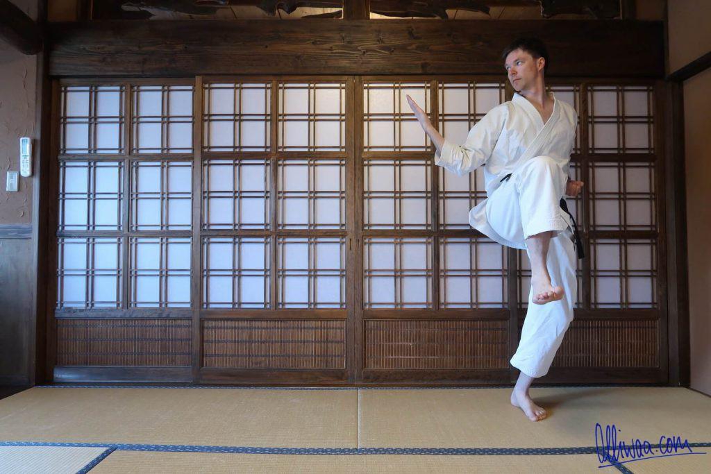 Karate in Japan